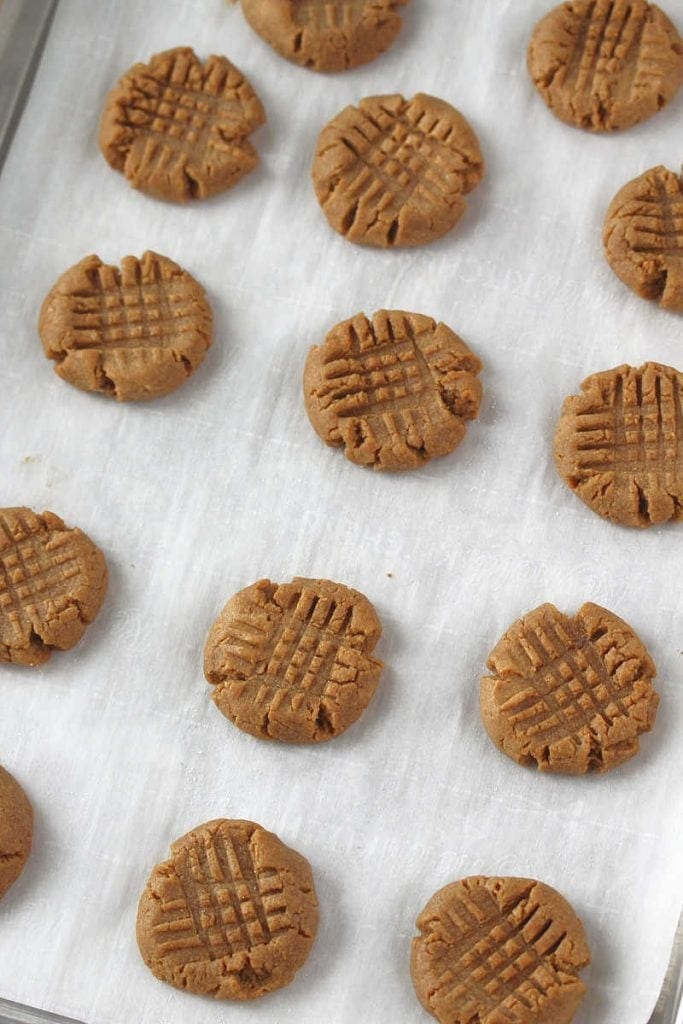 A baking sheet filled with flourless peanut butter cookies